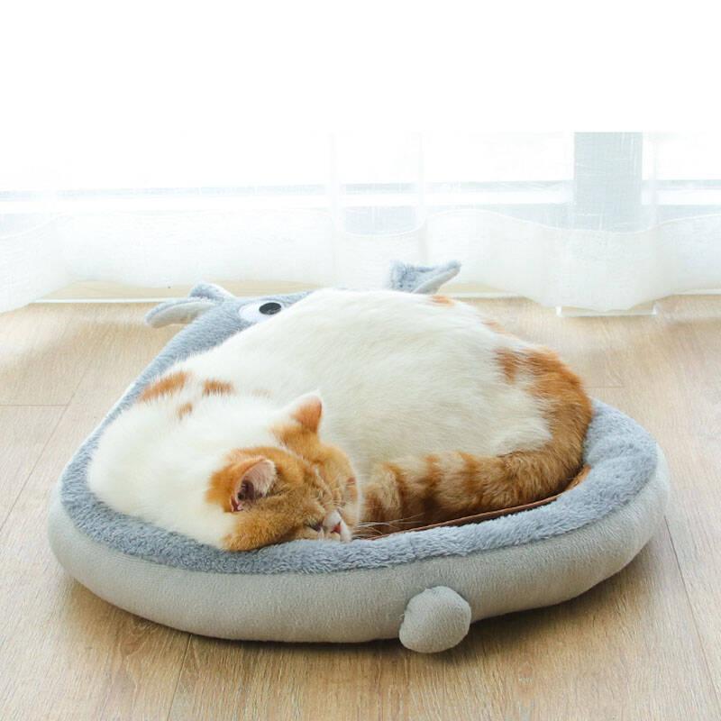 世界上最漂亮的猫窝排名前十名