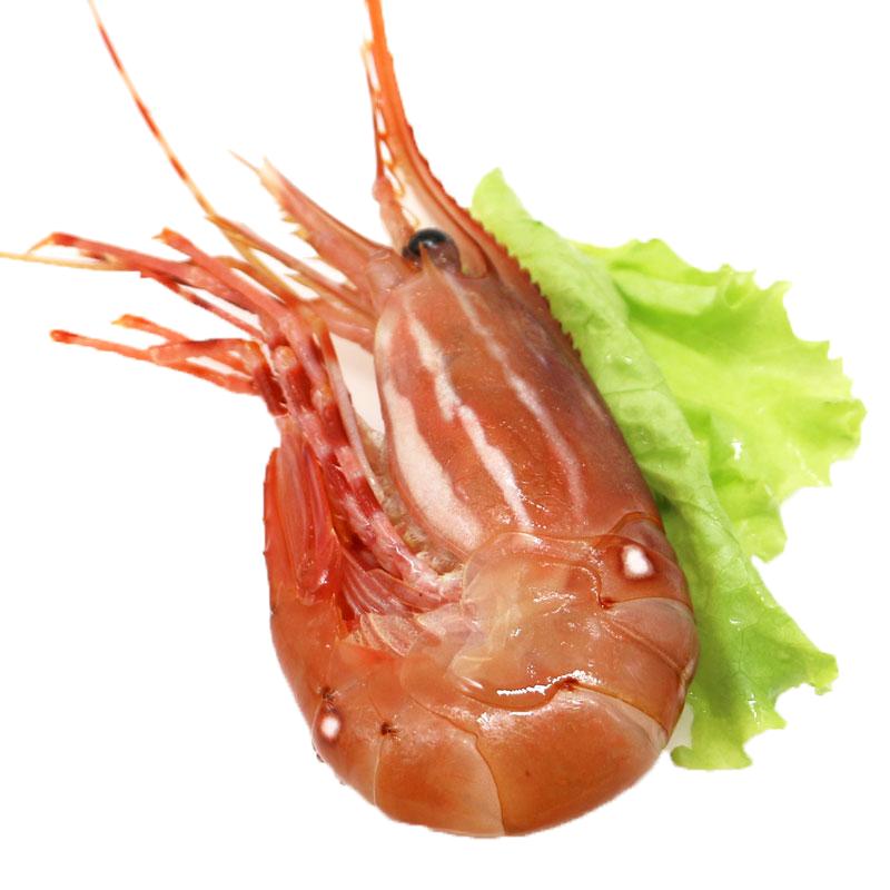 世界上最好吃的虾排名前十名