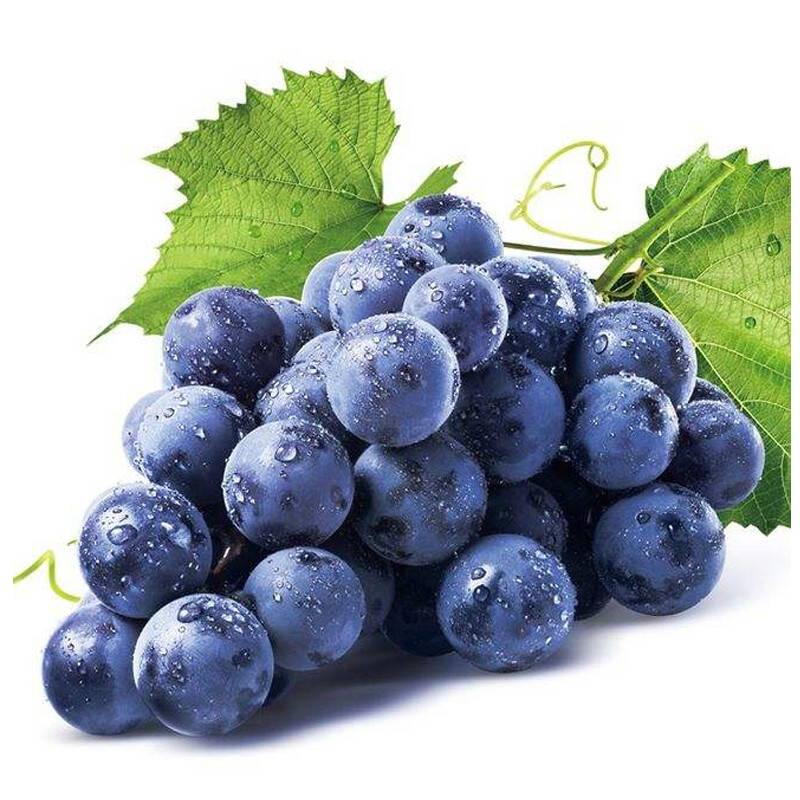 最好吃的葡萄品种排行榜10强