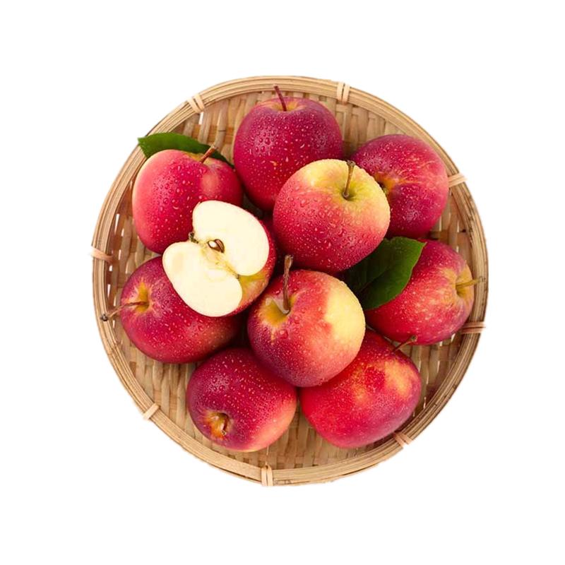 营养丰富的苹果推荐2021