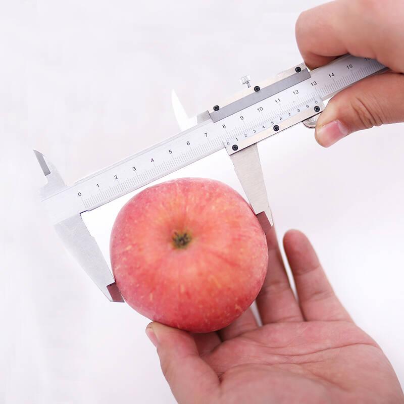 饱满多汁营养丰富的苹果推荐