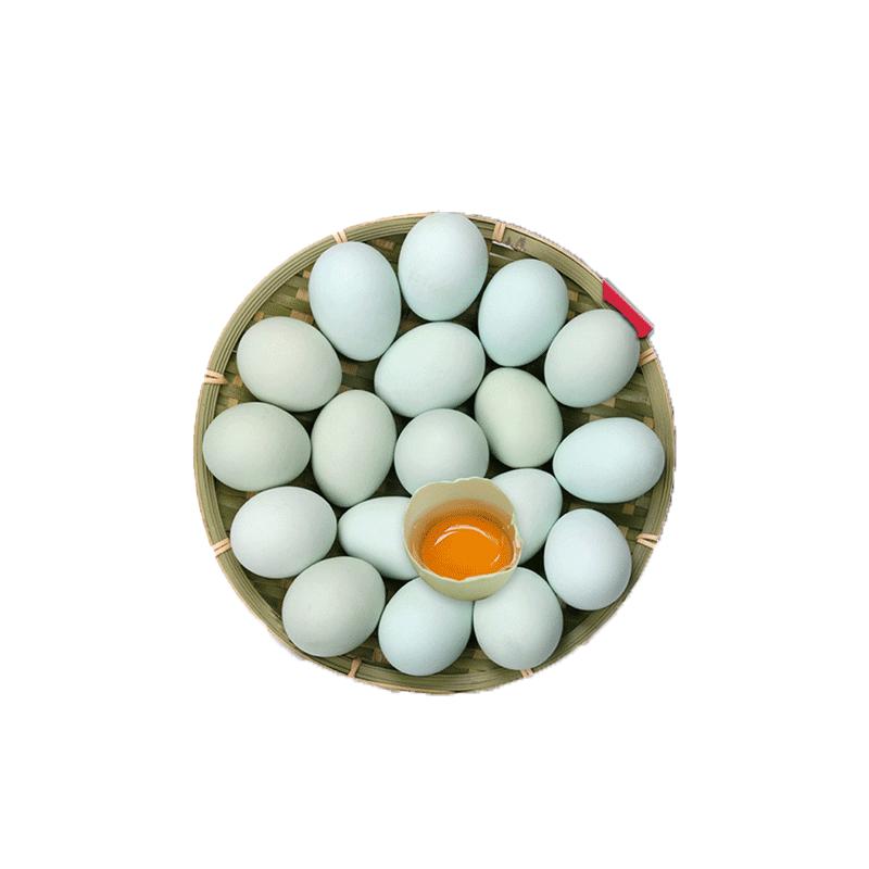 富含蛋白质的营养蛋类推荐
